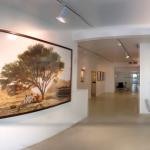 engel-gallery-toby-cohen-israel