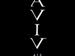 aviv613