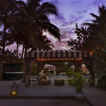 oasis-at-dusk
